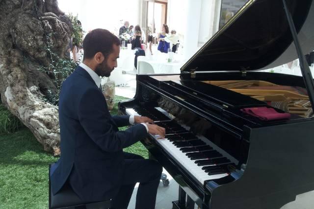 AaPp Quartet - Music for Wedding