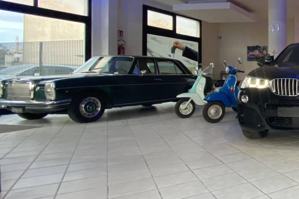 Pegasus Auto