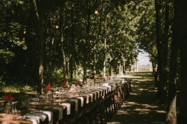 Babette Events & Food
