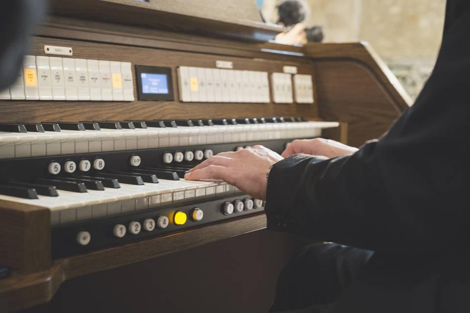 All'organo