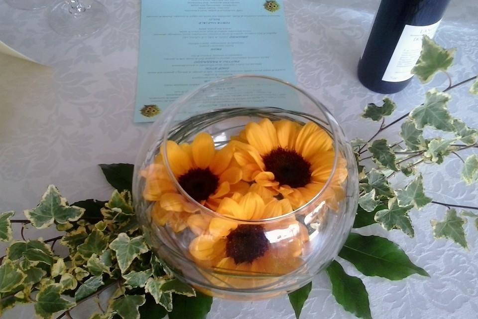 Riale Floricoltura