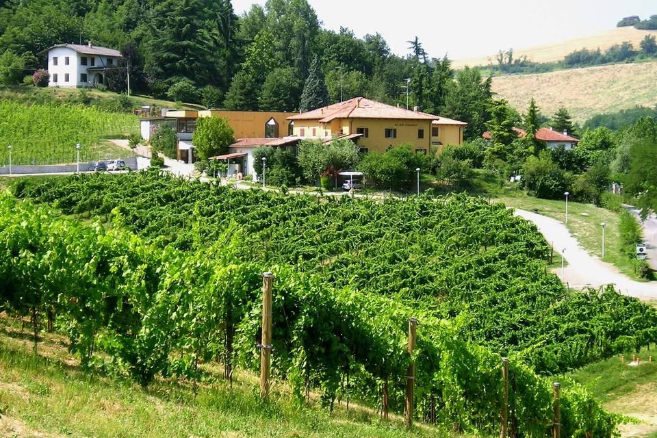 Agriturismo Borgo delle Vigne